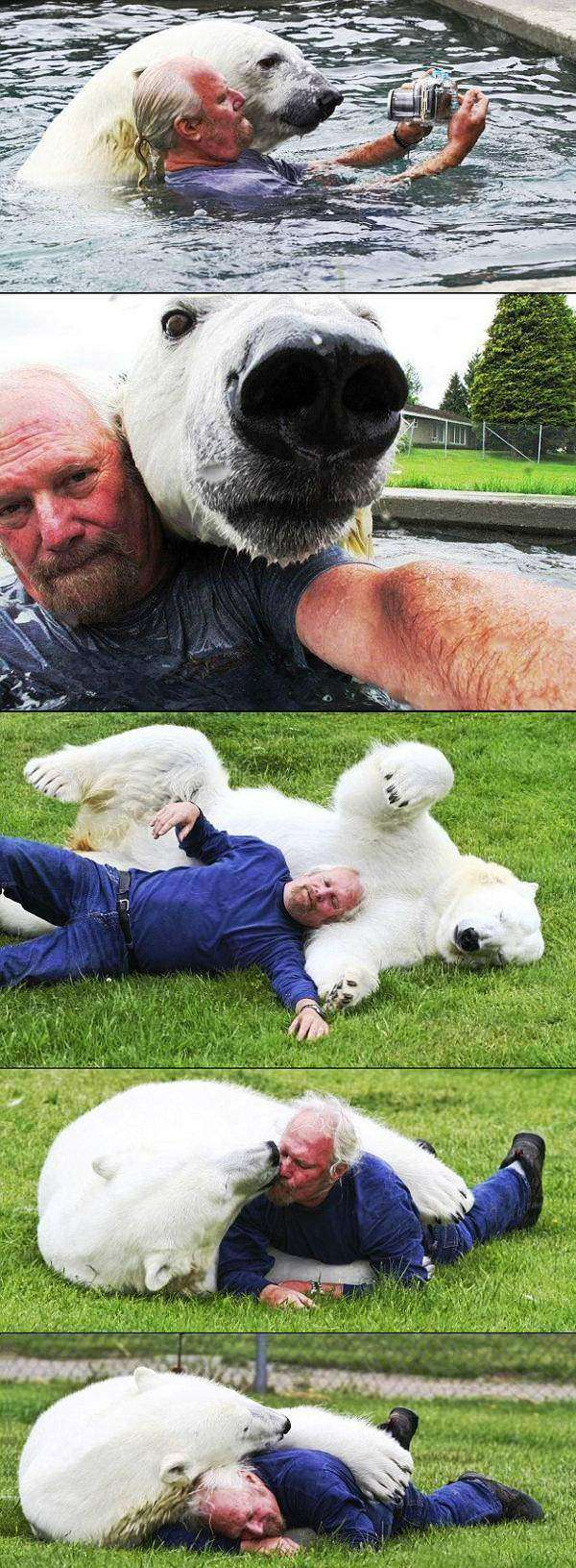 benefits polar bear zookeeper The Benefits Of Being A Polar Bear Zookeeper