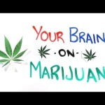 What Happens To Your Mind On Marijuana